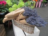 lavenderboroughmarket