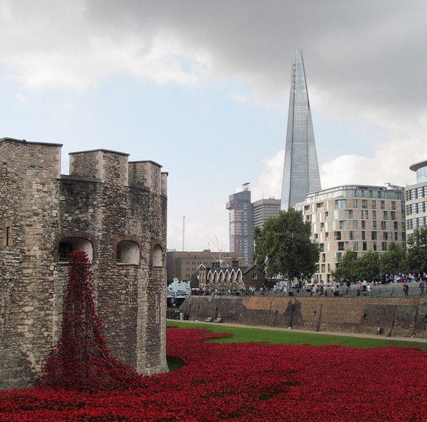 poppiesattoweroflondon